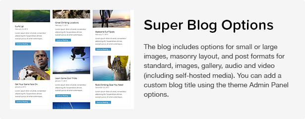 Total WordPress Theme: Blog Options