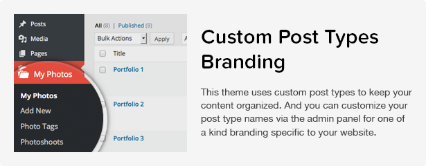 Total WordPress Theme: Post Types Branding