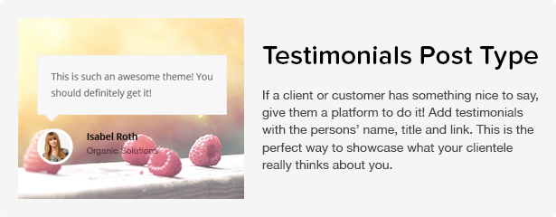 Total WordPress Theme: Testimonials