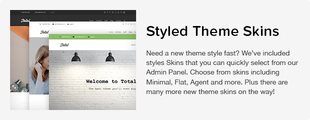 Total WordPress Theme: Theme Skins
